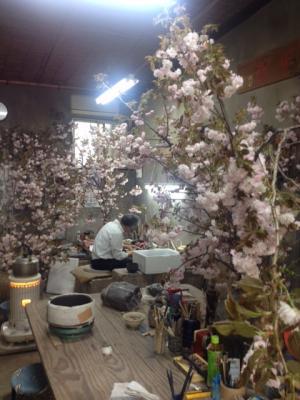 八重桜でお花見